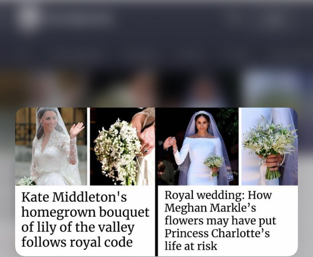 double standard Kate and Meghan